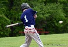 CIAC Baseball NVL-T. Holy Cross 6 vs. Ansonia 1 - Photo # HC1- (9)