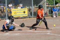 CIAC Softball Seymour 5 vs Montville 1 - Photo (5)