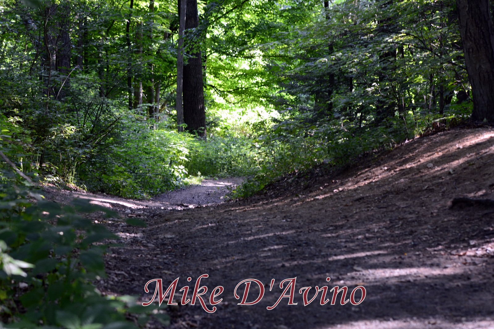 Farmington Canal Heritage Trail (11)