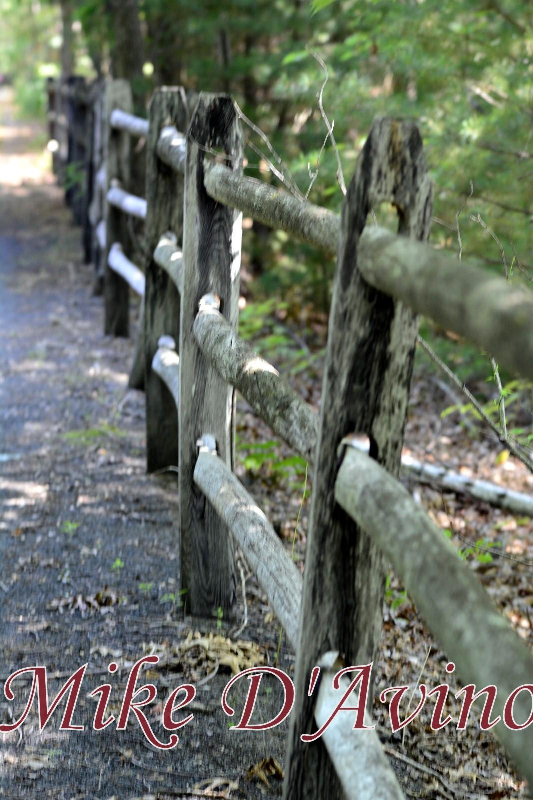 Farmington Canal Heritage Trail (53)