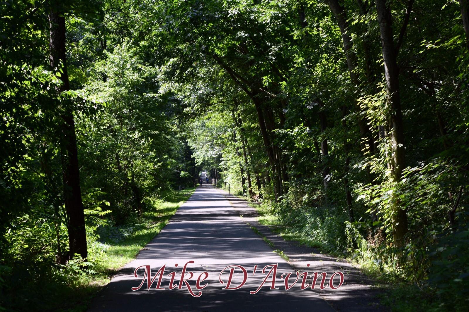 Farmington Canal Heritage Trail (66)