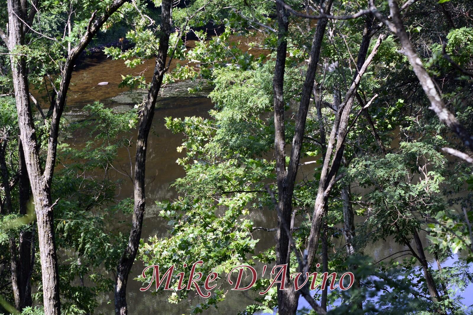Farmington Canal Heritage Trail (68)