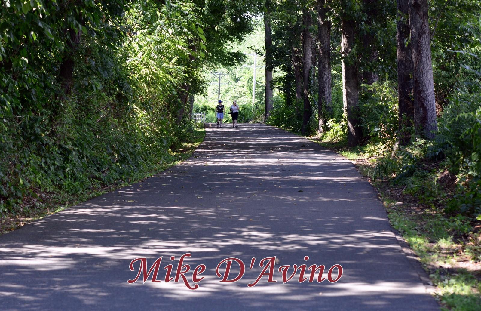Farmington River Trail (3)