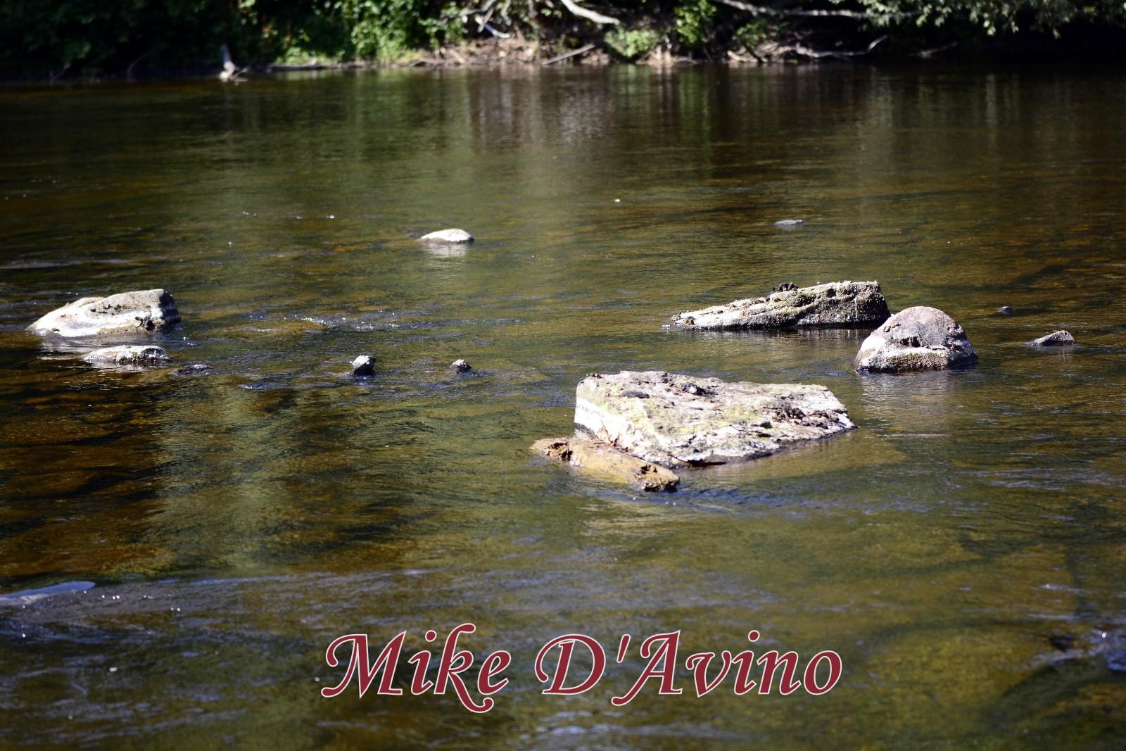 Farmington River Trail (53)