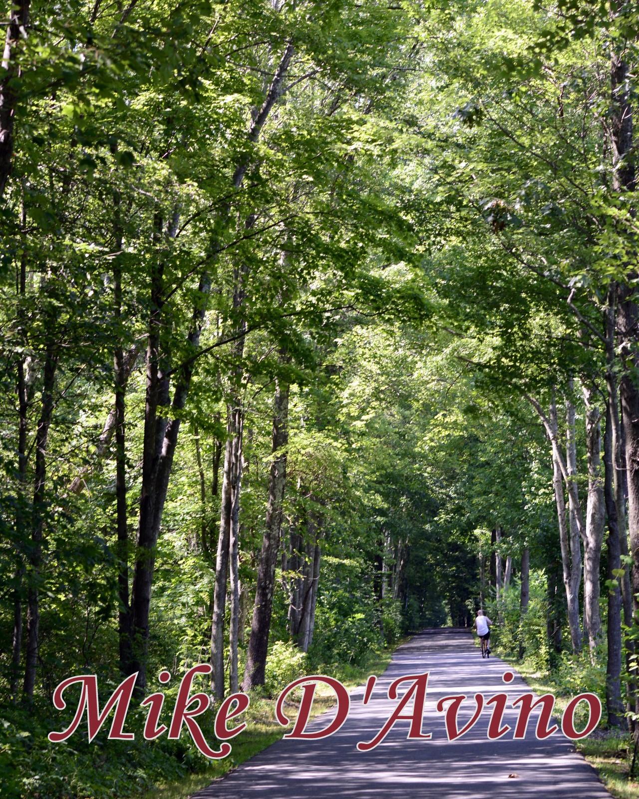 Farmington River Trail (7)