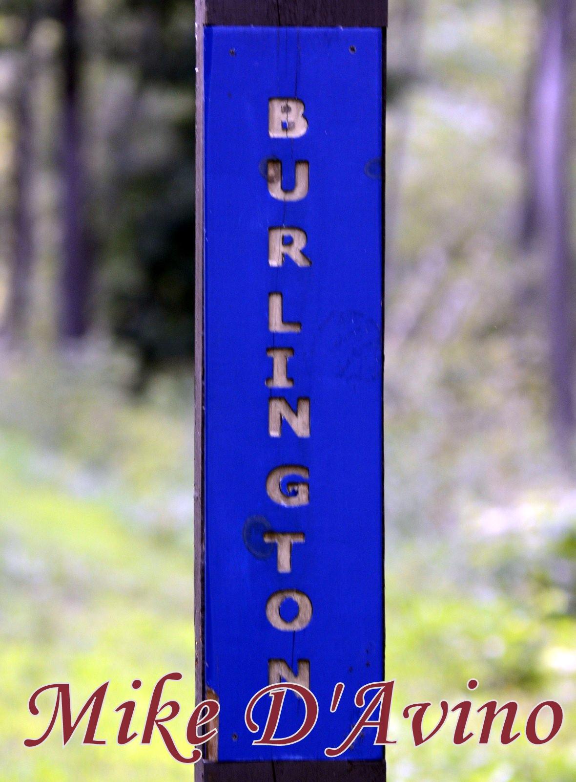 Farmington River Trail (87)