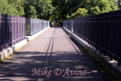 Farmington Canal Heritage Trail (14)