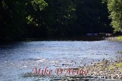 Farmington River Trail (56)