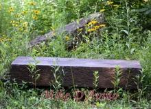 Farmington River Trail (65)