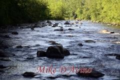 Farmington River Trail (72)
