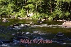 Farmington River Trail (73)