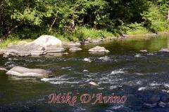 Farmington River Trail (74)