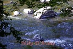 Farmington River Trail (94)