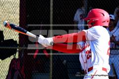04-06 Gallery CIAC BASE; Wolcott vs. Woodland - Photo # 964