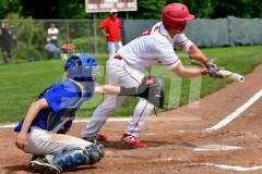 06-01 CIAC BASE; Wolcott 8 vs. Haddam-Killingworth 0 - Photo # 854