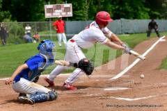 06-01 CIAC BASE; Wolcott 8 vs. Haddam-Killingworth 0 - Photo # 855