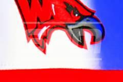 06-08 CIAC BASE; Class M Finals - Wolcott vs. St. Joseph - Photo # 040
