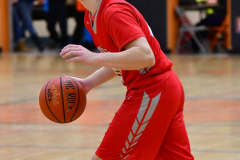 CIAC Boys Basketball; Watertown 63 vs. Wolcott 73 - Photo # 420