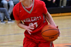 CIAC Boys Basketball; Watertown 63 vs. Wolcott 73 - Photo # 422