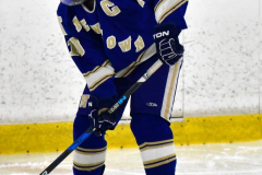 CIAC Ice Hockey; L.H.- H-K, Cogin. 8 vs Newtown 1 - Photo # (137)