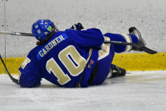 CIAC Ice Hockey; L.H.- H-K, Cogin. 8 vs Newtown 1 - Photo # (698)