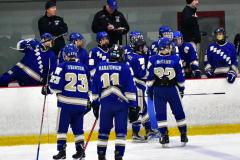 CIAC Ice Hockey; L.H.- H-K, Cogin. 8 vs Newtown 1 - Photo # (1020)