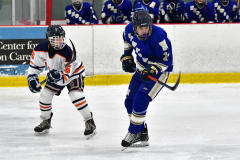 CIAC Ice Hockey; L.H.- H-K, Cogin. 8 vs Newtown 1 - Photo # (767)
