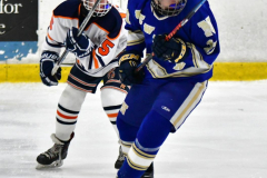CIAC Ice Hockey; L.H.- H-K, Cogin. 8 vs Newtown 1 - Photo # (768)
