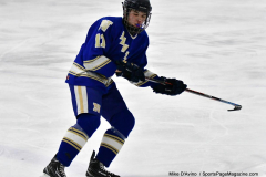 CIAC Ice Hockey; L.H.- H-K, Cogin. 8 vs Newtown 1 - Photo # (887)