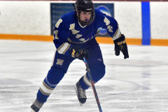 CIACT Ice Hockey D3 QFs; #1 Hand 5 vs. #8 Newtown 0 - Photo # 1031