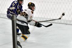 CIACT Ice Hockey D3 QFs; #1 Hand 5 vs. #8 Newtown 0 - Photo # 1151