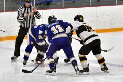 CIACT Ice Hockey D3 QFs; #1 Hand 5 vs. #8 Newtown 0 - Photo # 1216