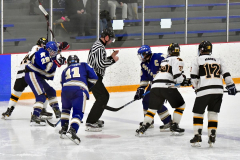 CIACT Ice Hockey D3 QFs; #1 Hand 5 vs. #8 Newtown 0 - Photo # 1218