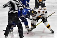 CIACT Ice Hockey D3 QFs; #1 Hand 5 vs. #8 Newtown 0 - Photo # 1230