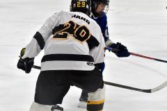 CIACT Ice Hockey D3 QFs; #1 Hand 5 vs. #8 Newtown 0 - Photo # 421