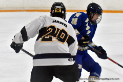 CIACT Ice Hockey D3 QFs; #1 Hand 5 vs. #8 Newtown 0 - Photo # 422