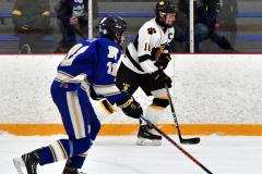 CIACT Ice Hockey D3 QFs; #1 Hand 5 vs. #8 Newtown 0 - Photo # 553