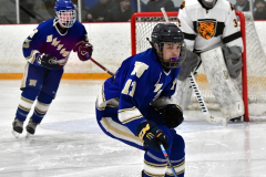 CIACT Ice Hockey D3 QFs; #1 Hand 5 vs. #8 Newtown 0 - Photo # 968