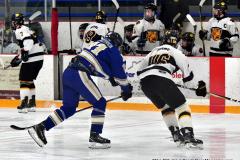 CIACT Ice Hockey D3 QFs; #1 Hand 5 vs. #8 Newtown 0 - Photo # 974