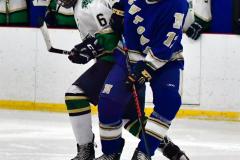 Gallery CIAC Ice Hockey; Northeastern 4 vs. Newtown 3 - Photo # 1379