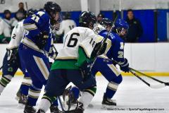 Gallery CIAC Ice Hockey; Northeastern 4 vs. Newtown 3 - Photo # 288