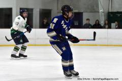 Gallery CIAC Ice Hockey; Northeastern 4 vs. Newtown 3 - Photo # 539