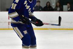 Gallery CIAC Ice Hockey; Northeastern 4 vs. Newtown 3 - Photo # 540
