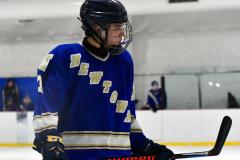 Gallery CIAC Ice Hockey; Northeastern 4 vs. Newtown 3 - Photo # 938