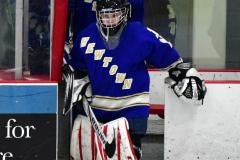 CIAC Ice Hockey; L.H.- H-K, Cogin. 8 vs Newtown 1 - Photo # (40)
