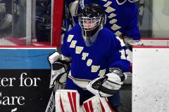 CIAC Ice Hockey; L.H.- H-K, Cogin. 8 vs Newtown 1 - Photo # (42)