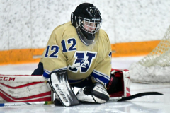 CIAC Ice Hockey; Newtown 2 vs. Daniel Hand 6 - Photo # 064
