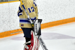 CIAC Ice Hockey; Newtown 2 vs. Daniel Hand 6 - Photo # 107