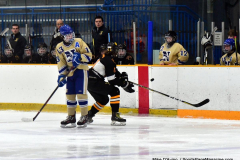 CIAC Ice Hockey; Newtown 2 vs. Daniel Hand 6 - Photo # 1085