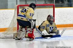 CIAC Ice Hockey; Newtown 2 vs. Daniel Hand 6 - Photo # 1664